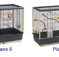 Размер клетки для средних попугаев