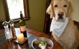 Корм для аллергичных собак