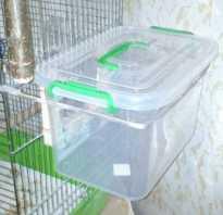Состав копошилки для попугая корелла