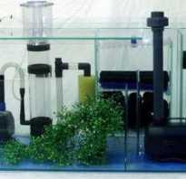 Что надо для аквариума с рыбками