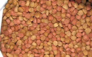 Чаппи корм для собак дозировка