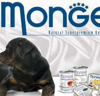 Monge корм для собак суточная норма