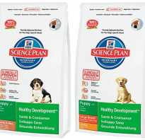 Линейка корма для собак хиллс