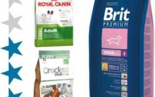 Рейтинг сухих кормов для собак премиум