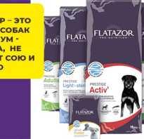 Флатазор корм для собак состав