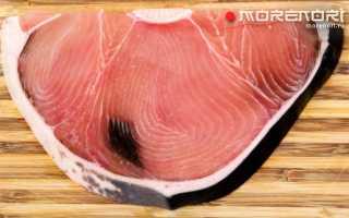 Акула съедобная рыба