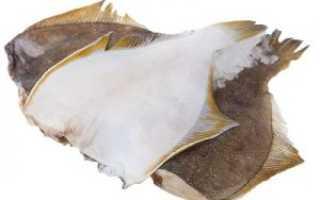 Семейство белых рыб