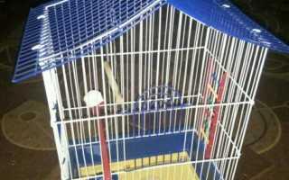 Схема клетки для попугаев