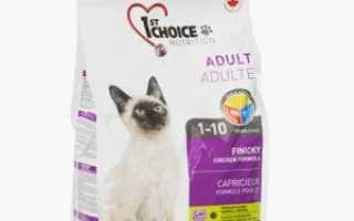 Корм для кошек чойс отзывы ветеринаров