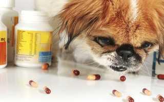 Гипоаллергенные продукты для собак список