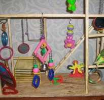 Деревянные игрушки для попугаев