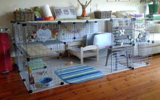 Что стелить кролику в клетку